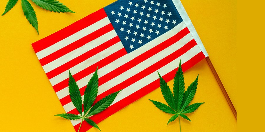 hemp leaves and American flag. snap dragon edible for sale.